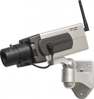 Dummy DM-0670 Κάμερα με αισθητήρα κίνησης Ασημί